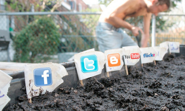Social media w NGO